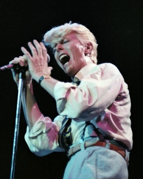 David Bowie on Serious Moonlight Tour