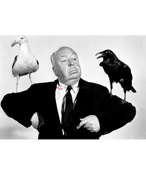"""Alfred Hitchcock """"The Birds"""""""